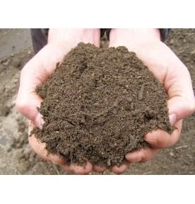 Soil: Topsoil/Compost Mix